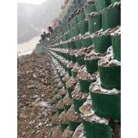绿化护坡 河道治理蜂巢约束系统 打孔压花规格齐全